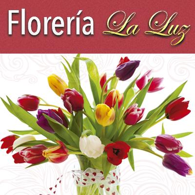 floreria-la-luz