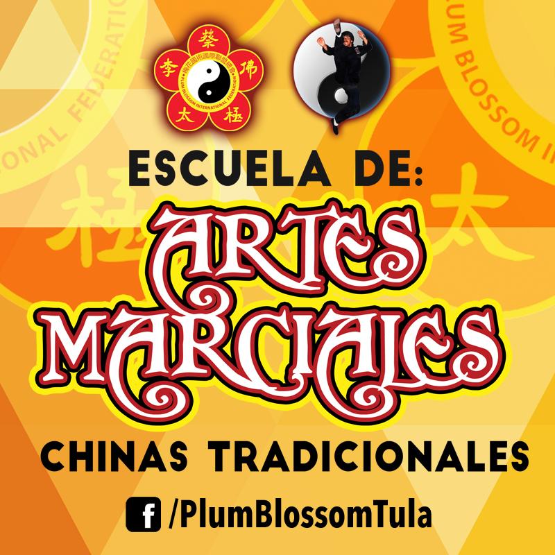 escuela-de-artes-marciales-chinas-tradicionales-almanaque-mx